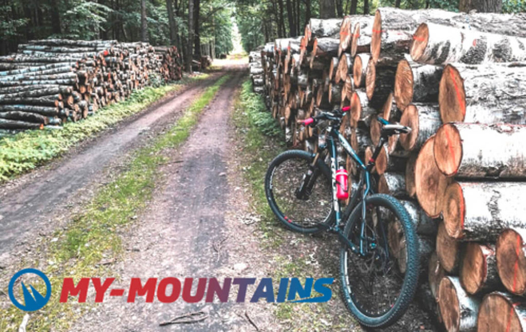 MTB ride is a low impact exercise which means that it's easy on the knees