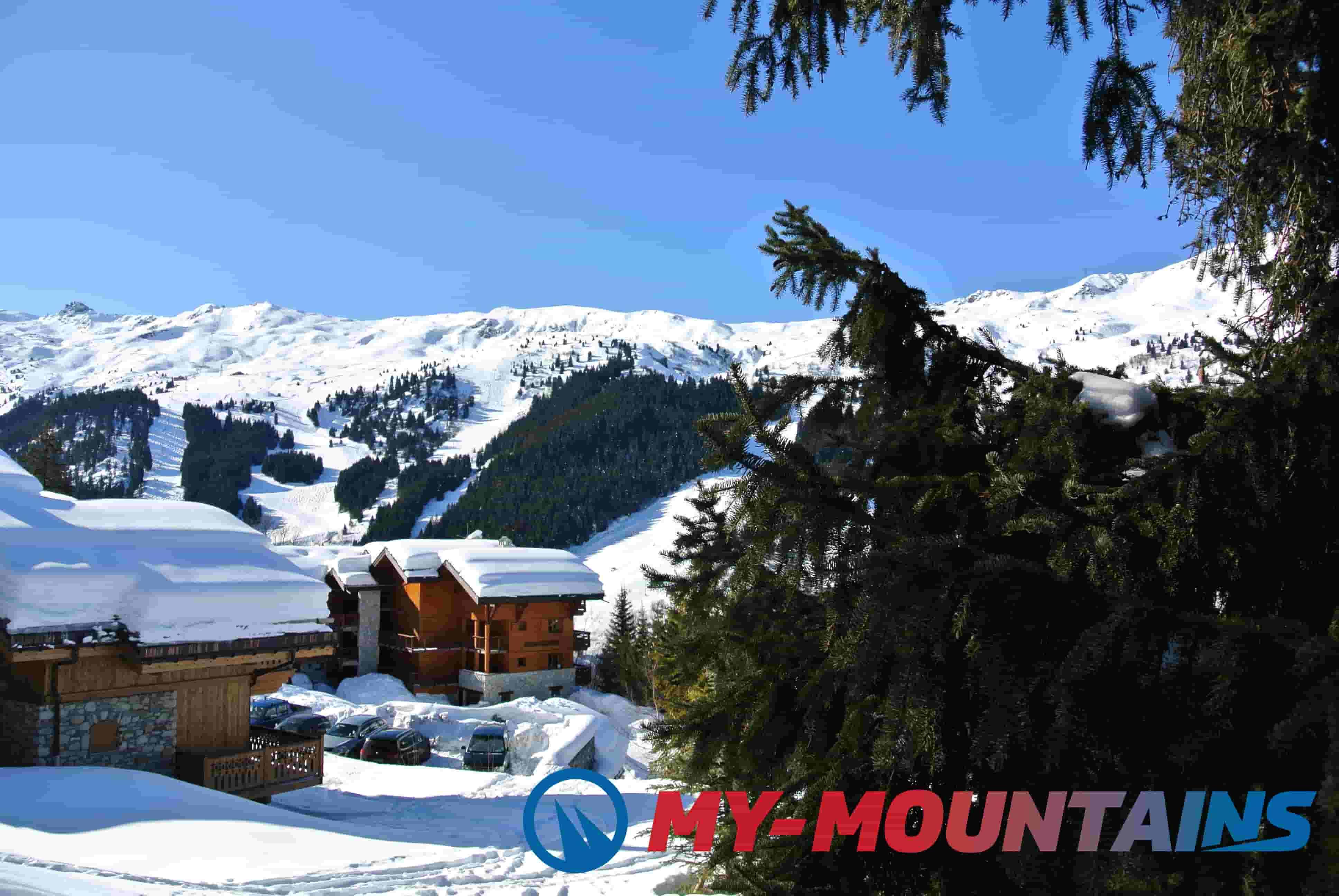 identify quality ski resorts